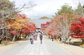 紅葉バスツアーin京都